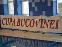 Cupa Bucovinei 2014